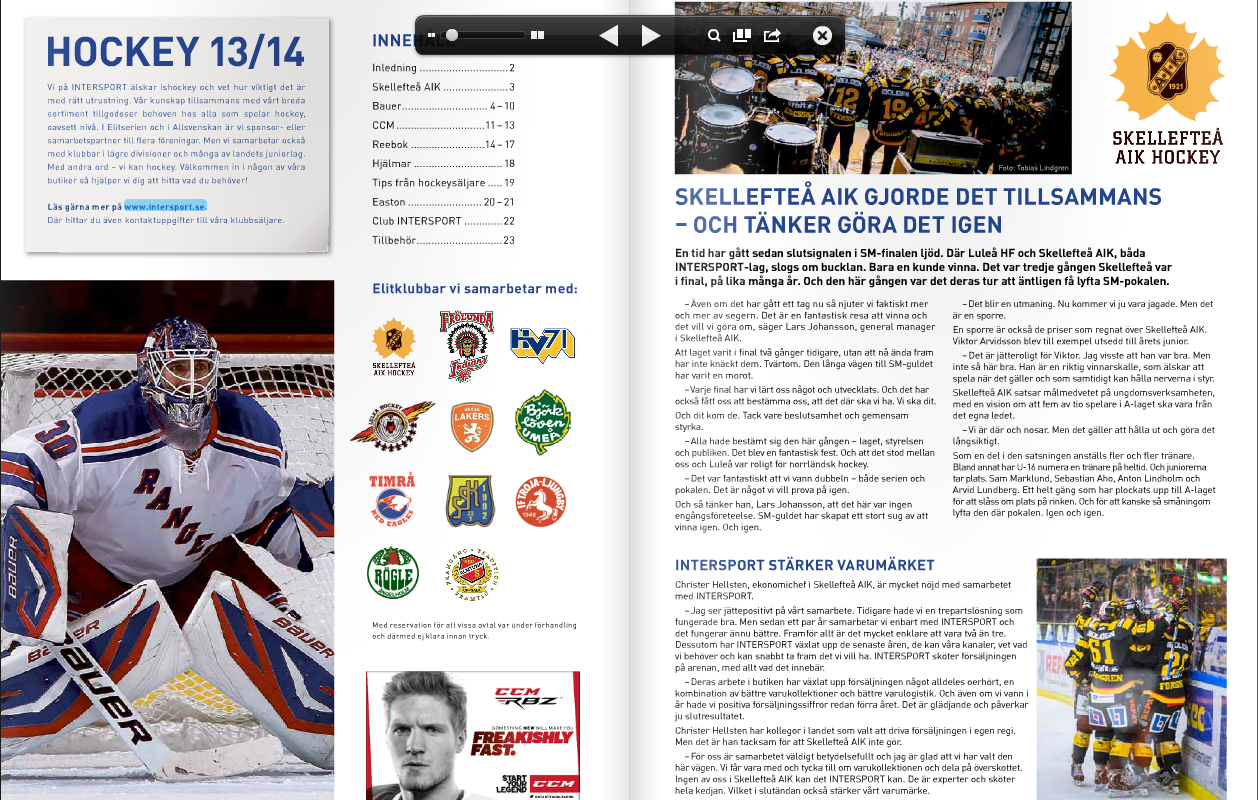 intersport hockey