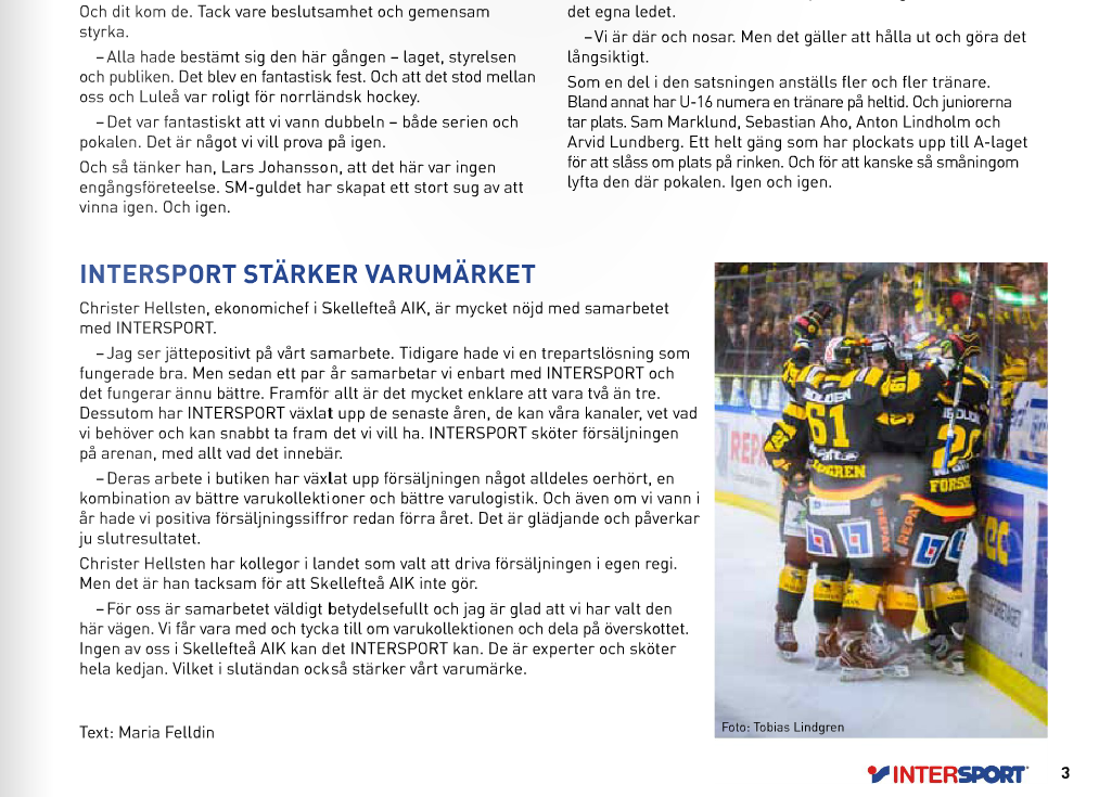 intersport hockey